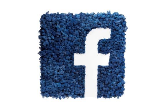 Sigla Facebook din Licheni